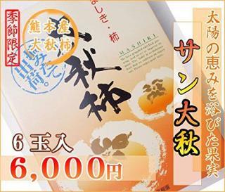 熊本産サン太秋柿6玉