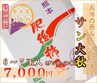熊本産サン太秋柿6玉(ダンボール箱)