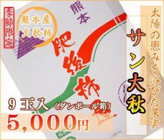 熊本産サン太秋柿9玉(ダンボール箱)