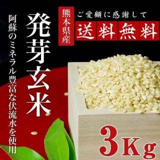【送料無料】熊本産無農薬発芽玄米3kg