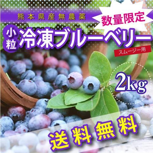 熊本産スムージー用小粒冷凍ブルーベリー2キロ