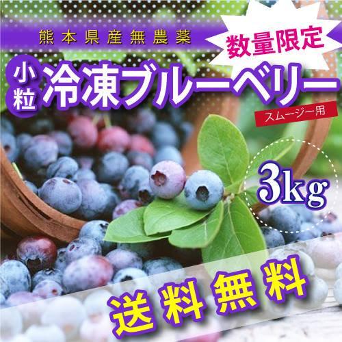 熊本産スムージー用小粒冷凍ブルーベリー3キロ