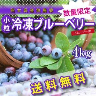 熊本産スムージー用小粒冷凍ブルーベリー4キロ