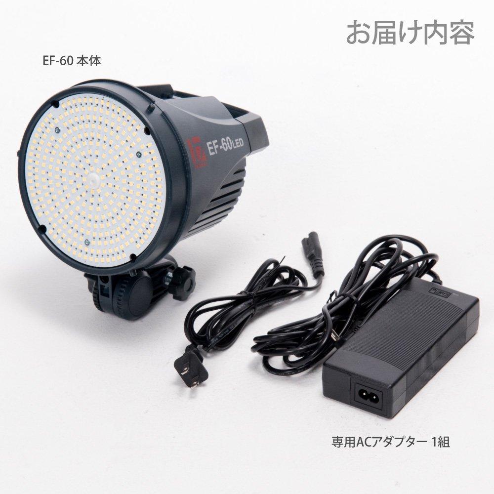 LEDライト EF-60 お届け内容