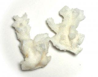 ハーバリウム用<br/>ツールパーツ サンゴ