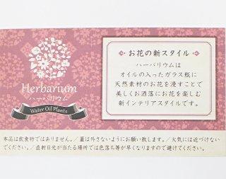 デザインカードS<br/>ピンク