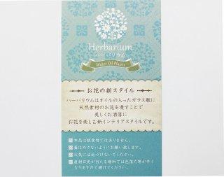 デザインカードS<br/>グリーン