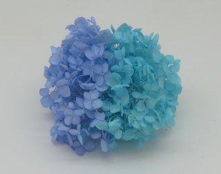 TOKA<br>FMソフトアナベルキャンディBOX<br />パープリッシュブルー&空