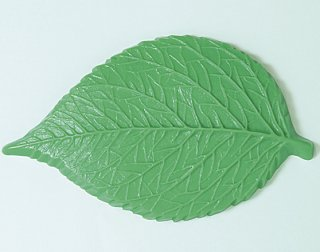葉型Aアジサイ