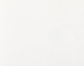 コスモ布 綿オックスフォード ホワイト