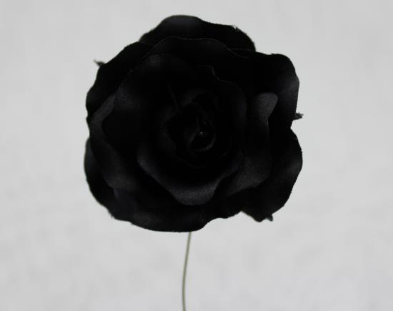 S-9038 クララローズ L / 31 ブラック