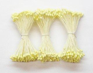 素玉 3号<br/>濃い黄