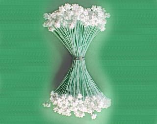 綿糸 カスミ草 大 白/ヒワ軸