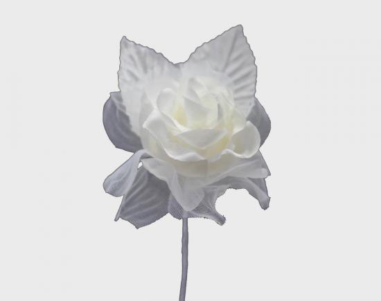 スウィートローズ / ホワイト