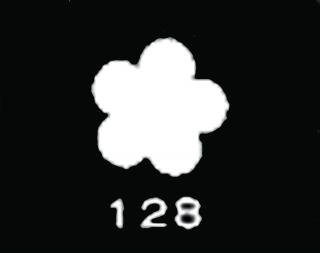 TM128<br />わすれな 小 ウスギヌ【ネコポス可】
