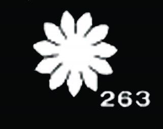 TM263 マーガレット豆<br /> サテン【ネコポス可】