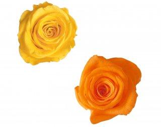 ローズ・ヴェルメイユ<br />アイネスアソートD<br />サフランイエロー オレンジ