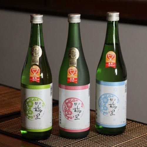 【全国送料無料】ワイングラスでおいしい日本酒アワード金賞受賞 越乃梅里飲み比べ3本セット(純吟・特純・吟醸)