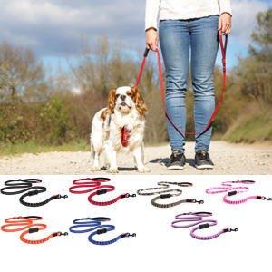 犬 リード 小型犬用 EZYDOG ゼロショックライト 180cm