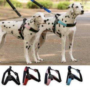 犬 ハーネス 中型犬・大型犬用 トレ・ポンティ Brio(ブリオ)