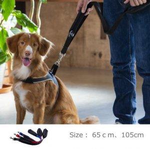 犬 リード 中型犬・大型犬用 トレ・ポンティ Double Safety Handle Leash