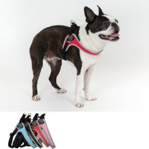 犬 ハーネス 小型犬用・中型犬 トレ・ポンティ Fibbia(フィッビア) アジャスタブルタイプ