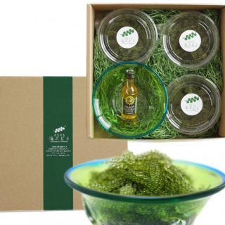 海ぶどうギフトセット(海ぶどう、オリーブオイル、琉球ガラスの器)