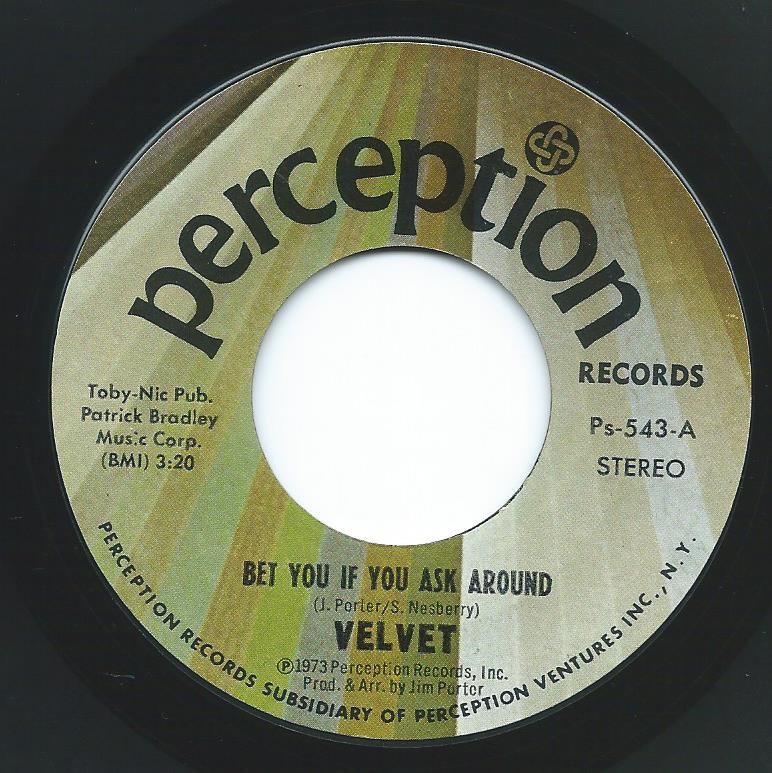 VELVET,THE PERCEPTION STRING ORCHESTRA / BET YOU IF YOU ASK AROUND (7