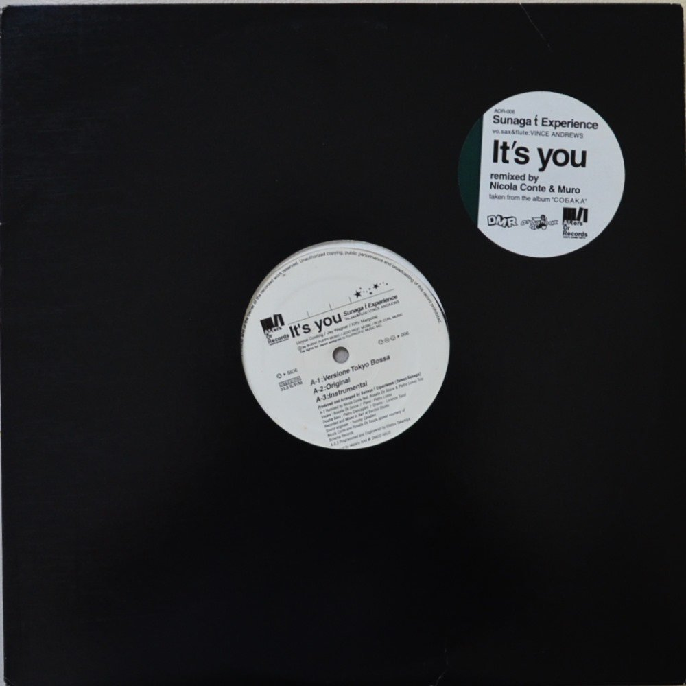 SUNAGA T EXPERIENCE (須永辰緒,TATSUO SUNAGA) / IT'S YOU / IT'S YOU (IT'S MURO MIX) (12