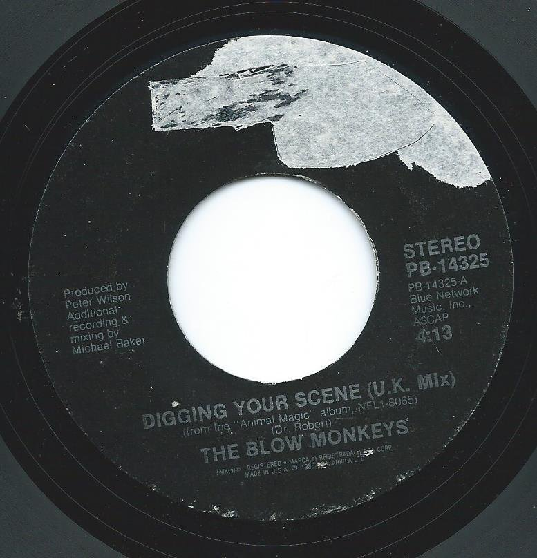 THE BLOW MONKEYS / DIGGING YOUR SCENE (7