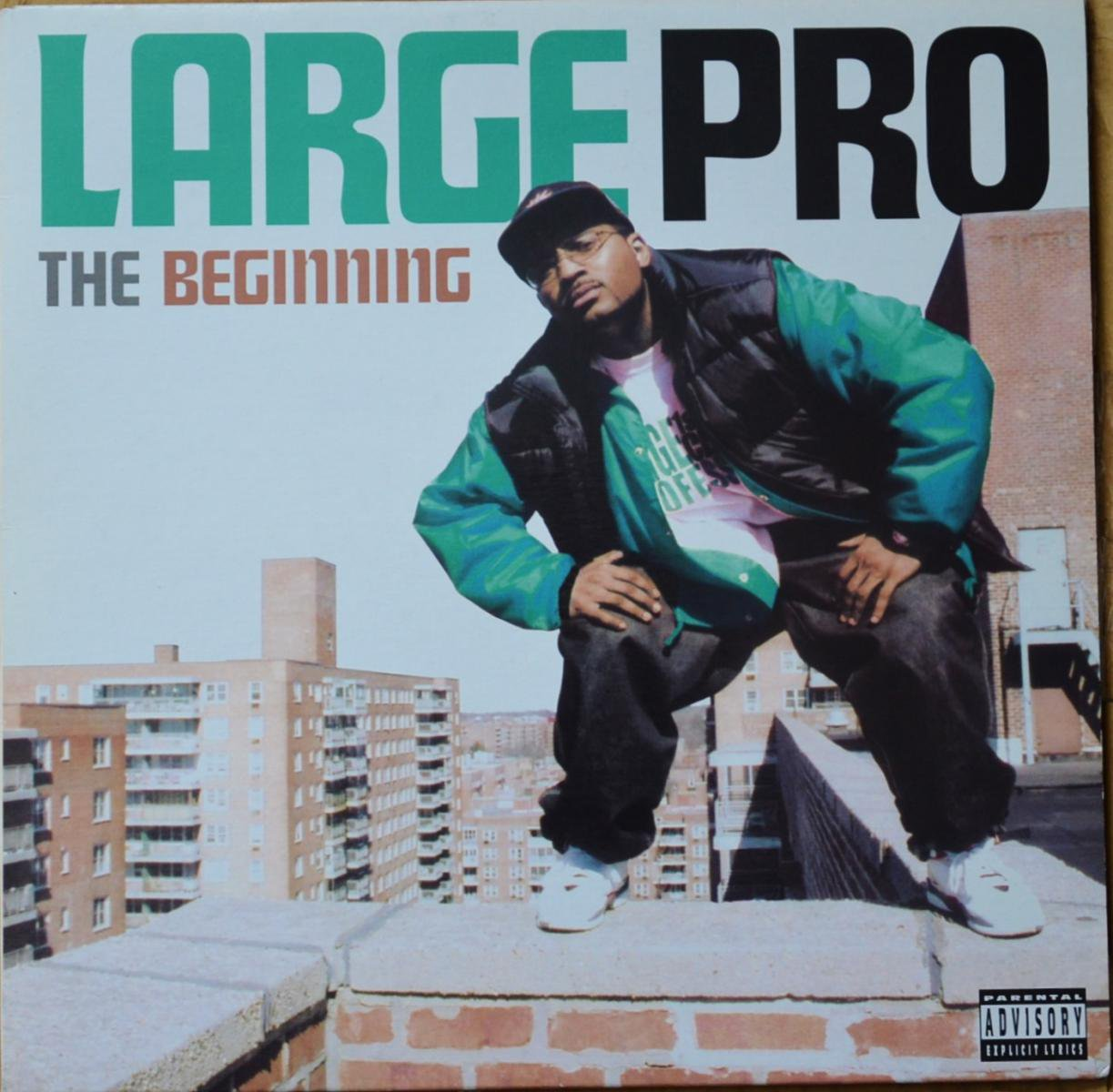 LARGE PRO / THE BEGINNING (12