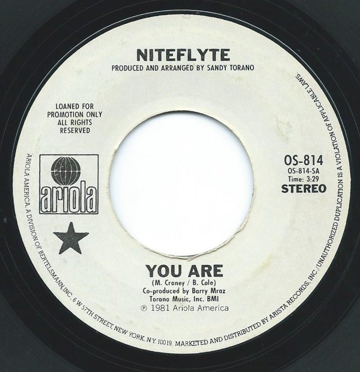 NITEFLYTE ‎/ YOU ARE (7