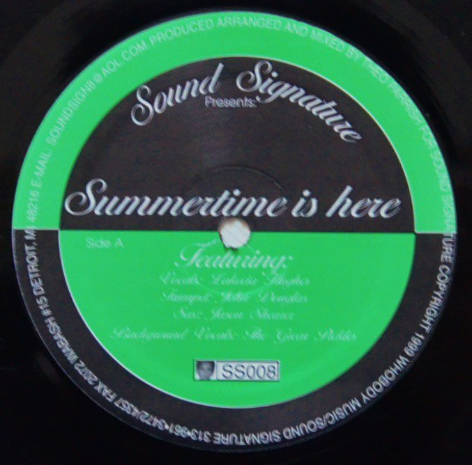 THEO PARRISH ‎/ SUMMERTIME IS HERE (12
