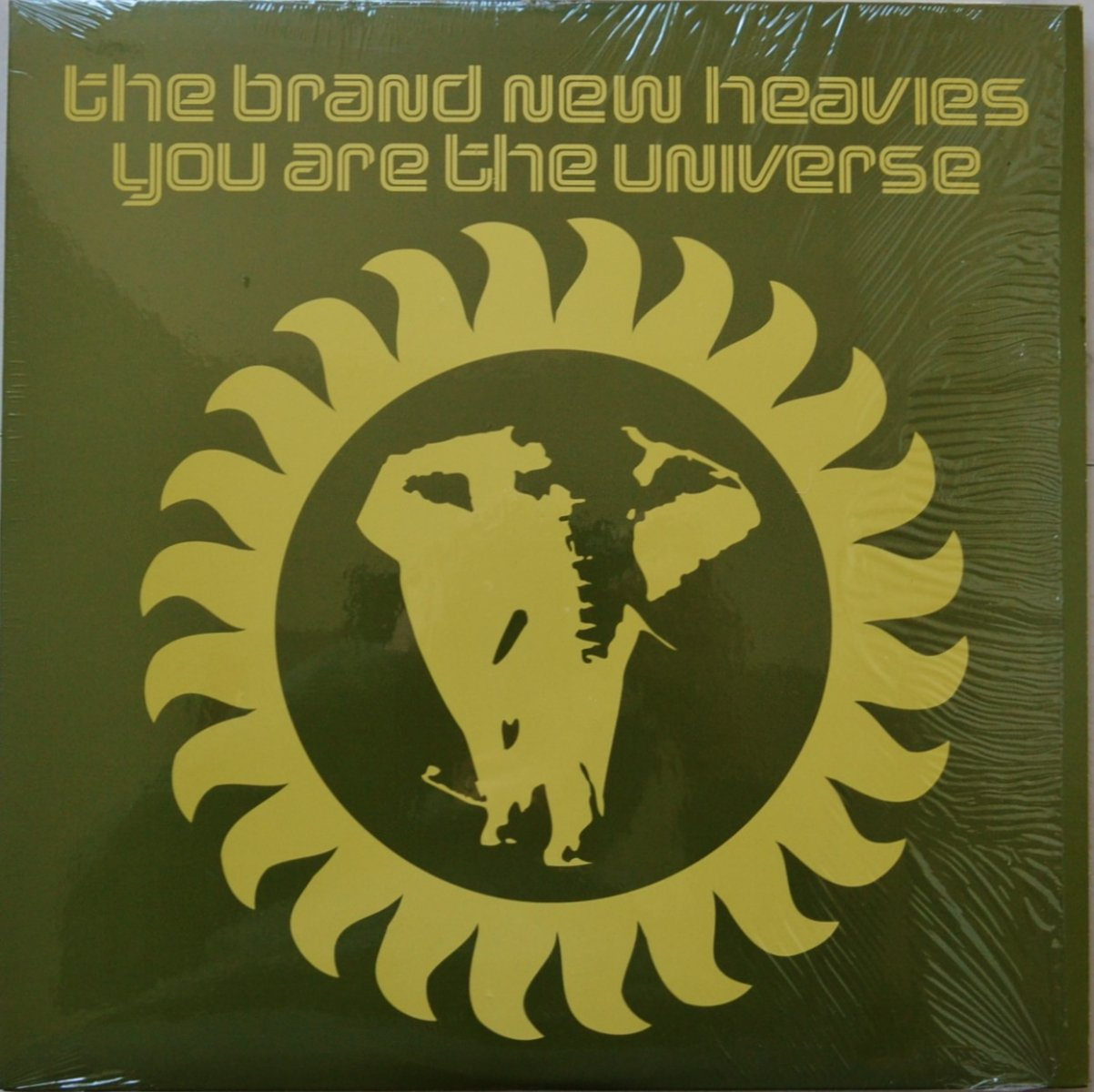 THE BRAND NEW HEAVIES ‎/ YOU ARE THE UNIVERSE (12