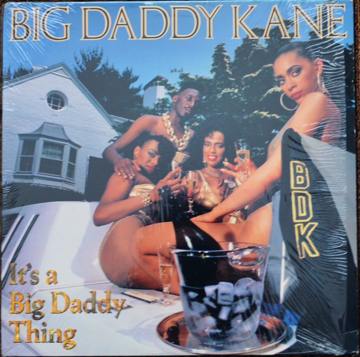 BIG DADDY KANE / IT'S A BIG DADDY THING (1LP)