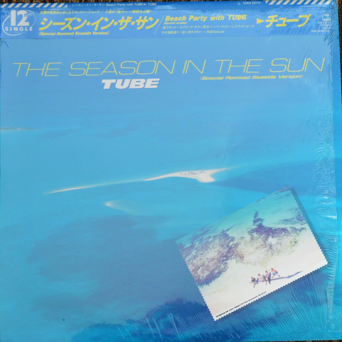 チューブ TUBE / シーズン・イン・ザ・サン THE SEASON IN THE SUN - SPECIAL REMIXED SEASIDE VERSION (12