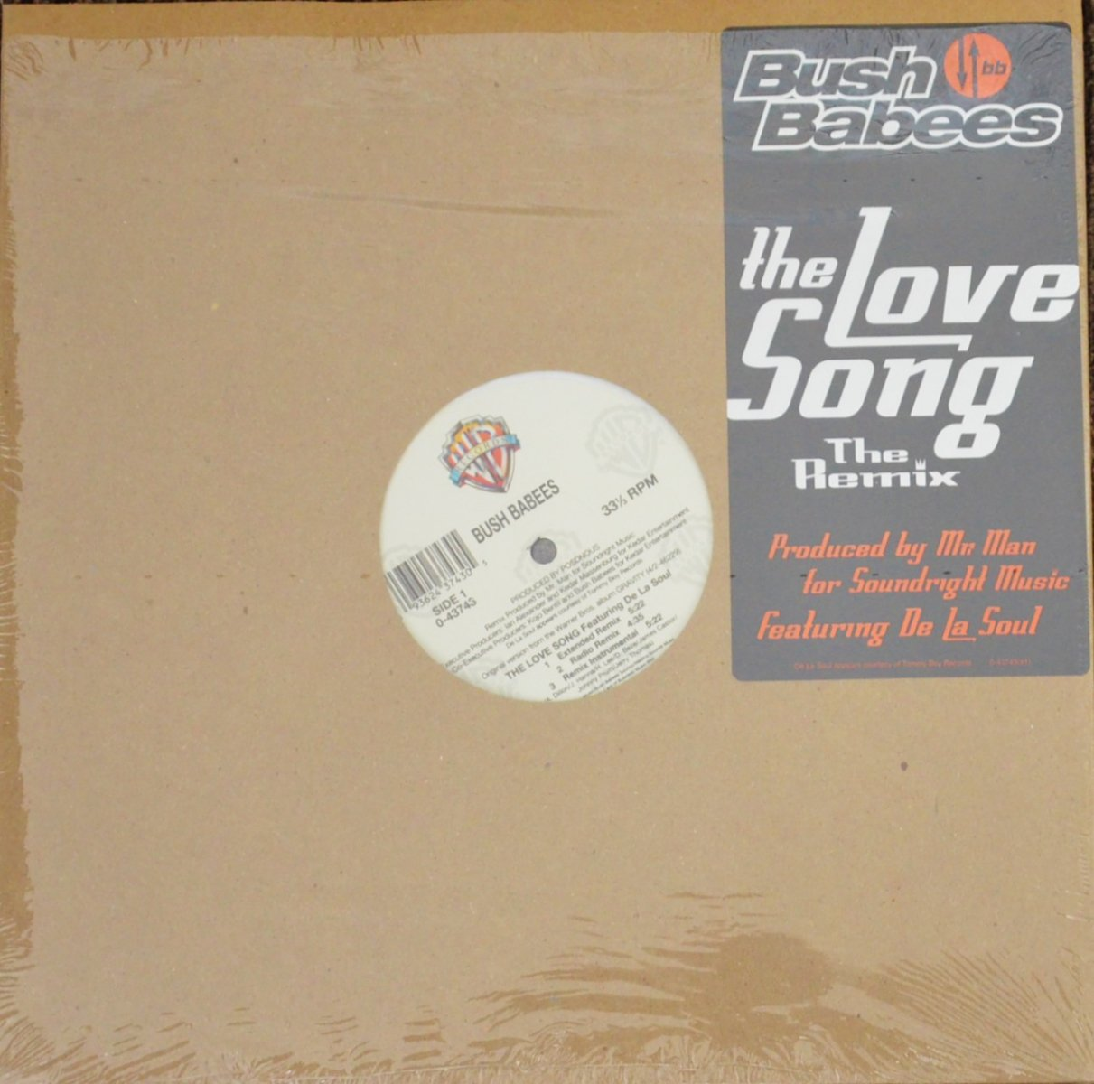 BUSH BABEES / THE LOVE SONG (THE REMIX) (12
