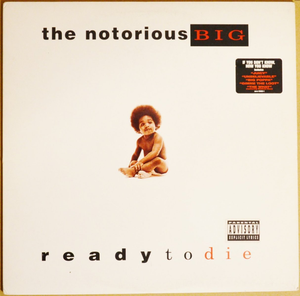 THE NOTORIOUS B.I.G. / READY TO DIE (1LP)