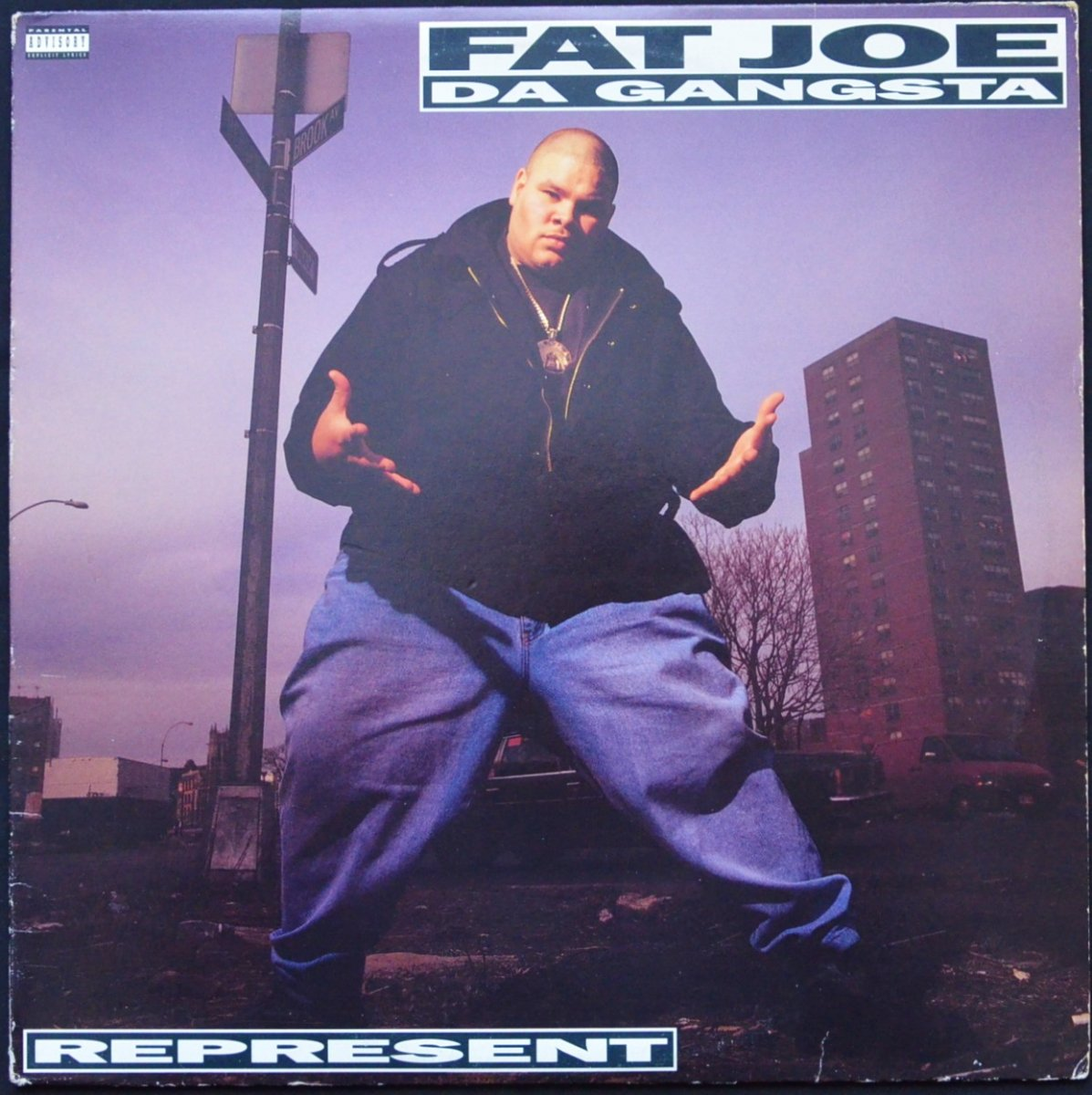 FAT JOE DA GANGSTA / REPRESENT (1LP)