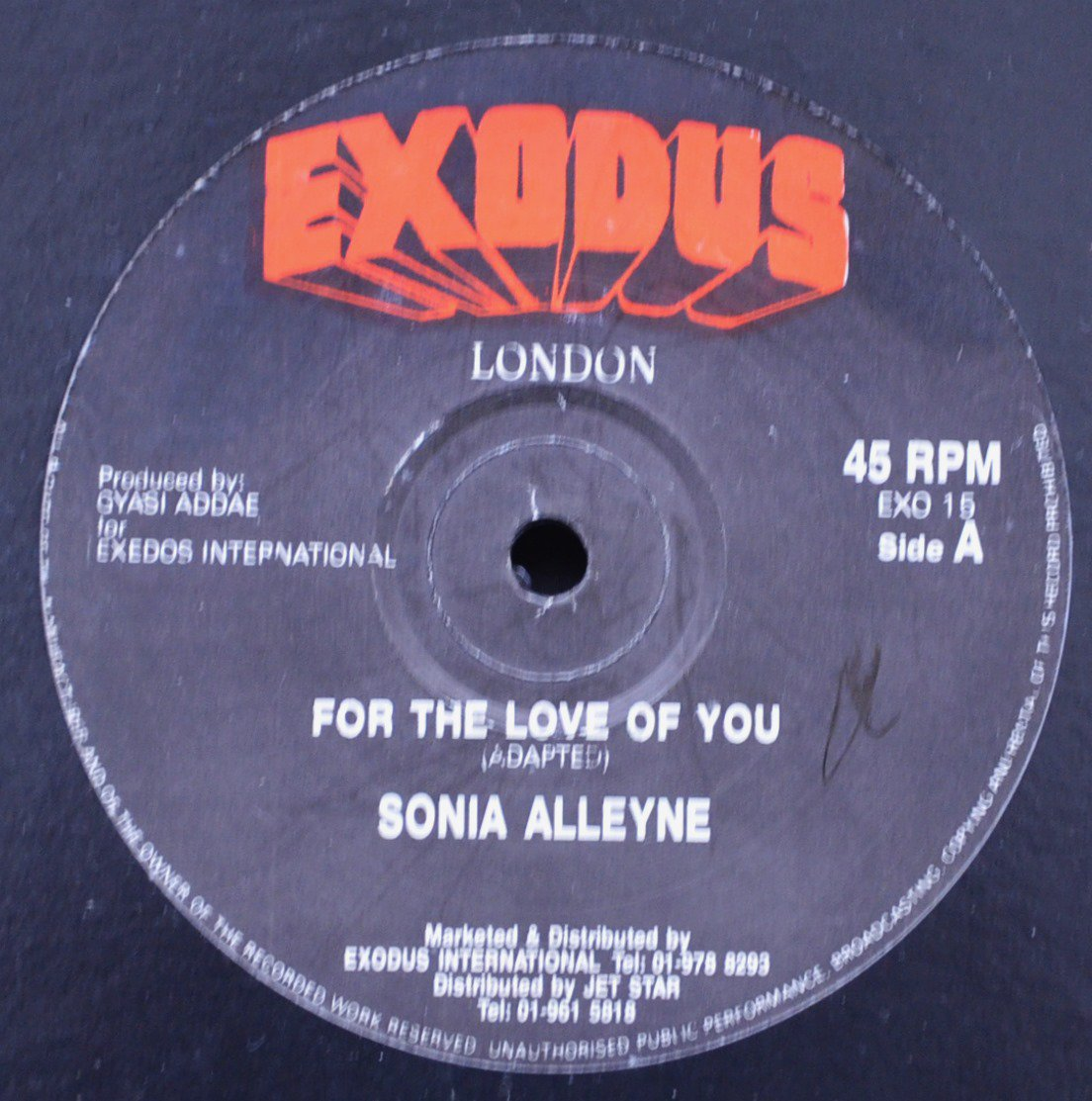 SONIA ALLEYNE ‎/ FOR THE LOVE OF YOU (12