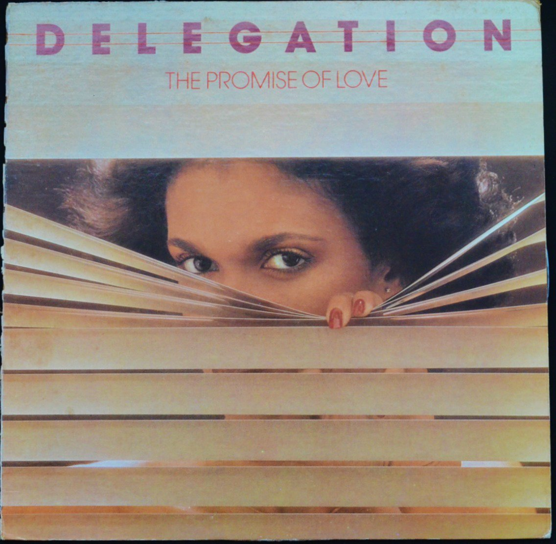 DELEGATION / THE PROMISE OF LOVE (LP)