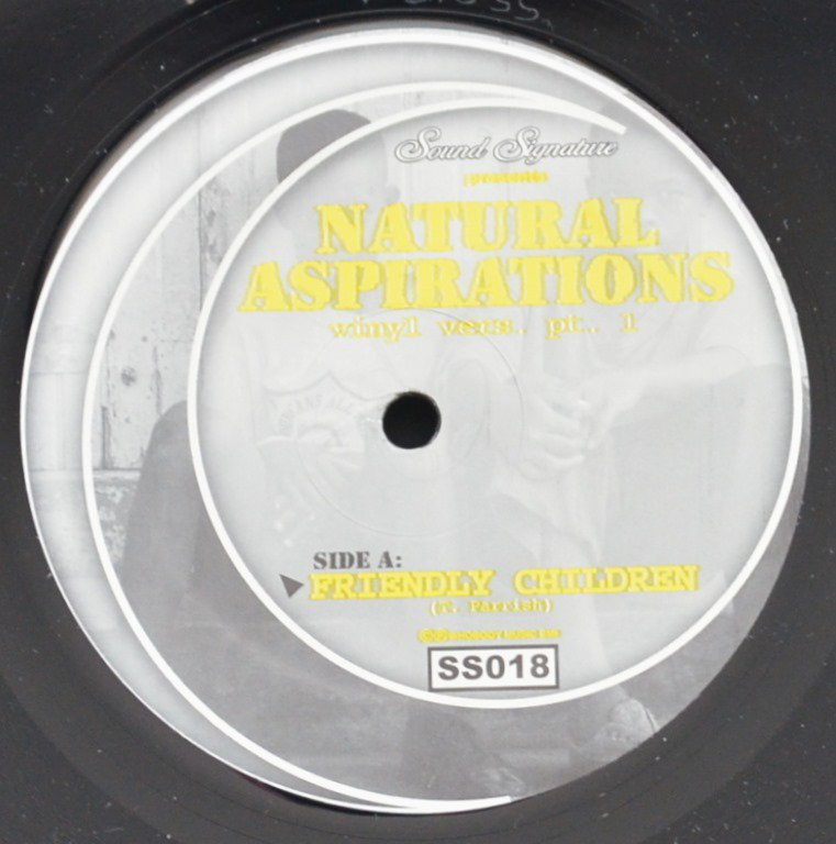 THEO PARRISH ‎/ NATURAL ASPIRATIONS (VINYL VERS. PT. 1) (12