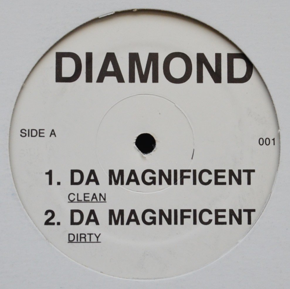 DIAMOND D / DA MAGNIFICENT / WHY YALL HATIN? (12