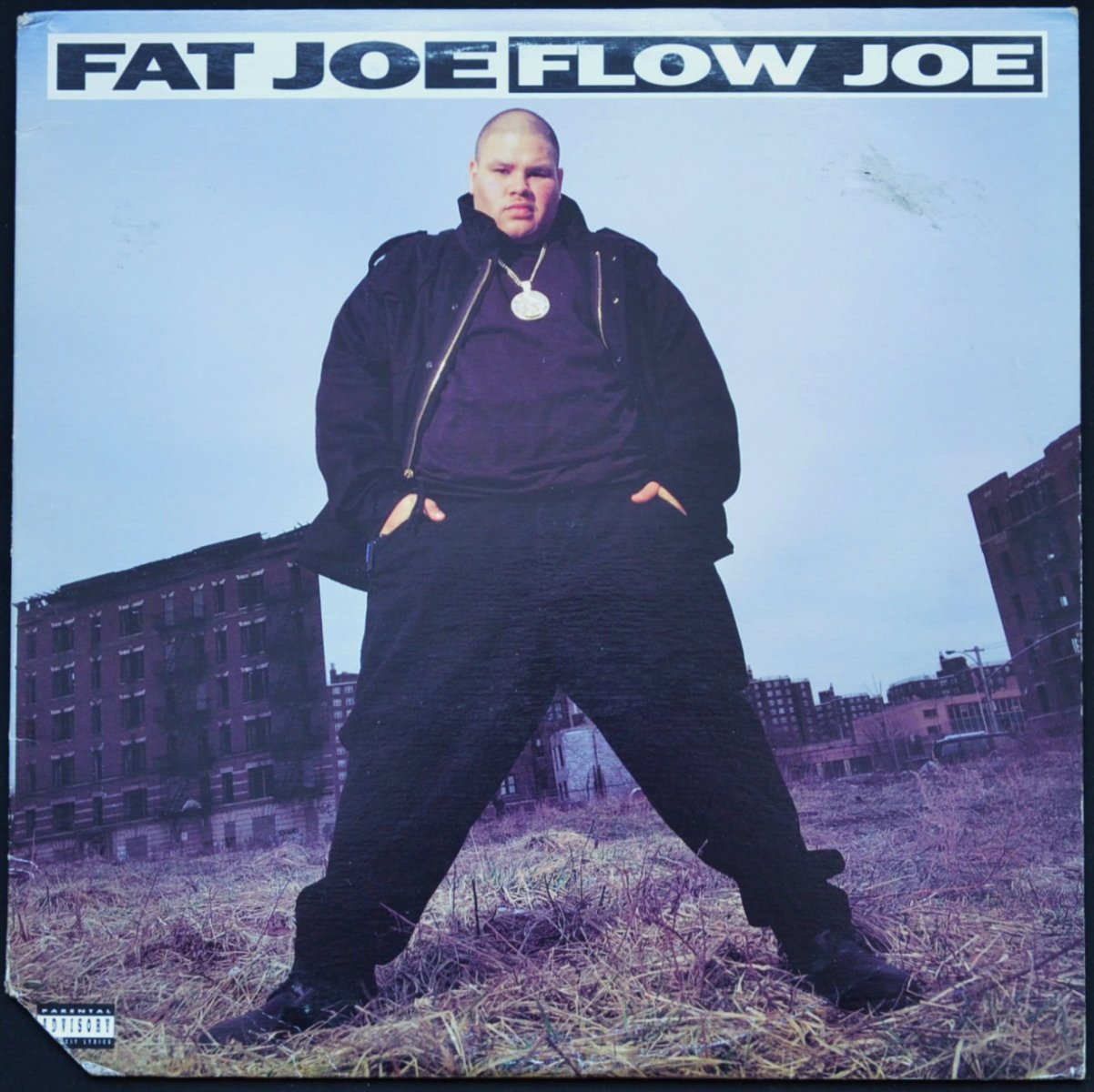 FAT JOE ‎/ FLOW JOE (PROD BY DIAMOND D) / LIVIN' FAT (PROD BY LORD FINESSE) (12