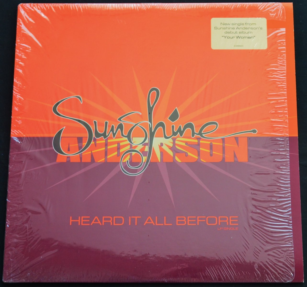 SUNSHINE ANDERSON / HEARD IT ALL BEFORE (12