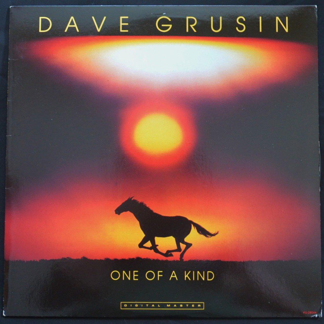 デイブ・グルーシン DAVE GRUSIN / ワン・オブ・ア・カインド ONE OF A KIND (LP)