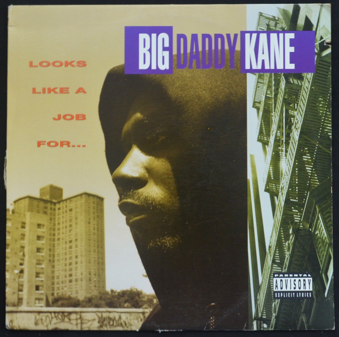 BIG DADDY KANE / LOOKS LIKE A JOB FOR... (1LP)
