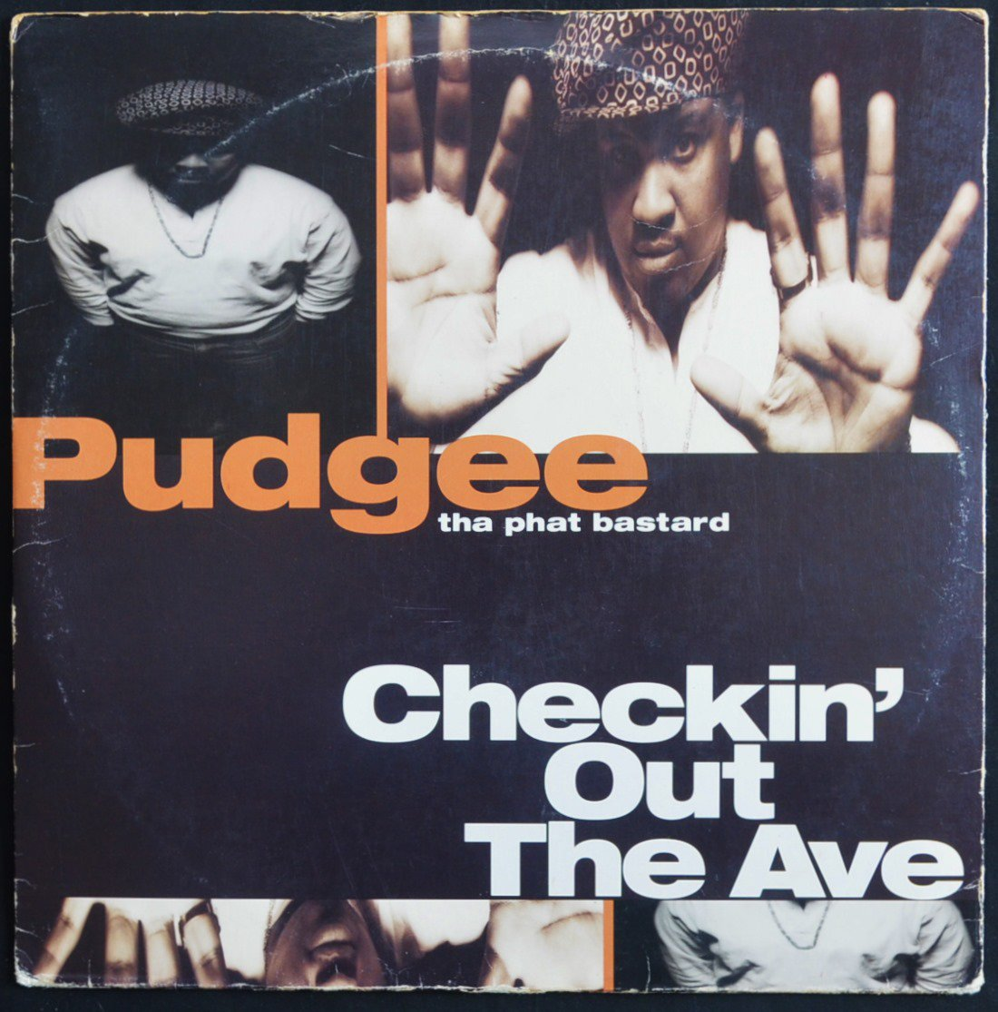 PUDGEE THA PHAT BASTARD / CHECKIN' OUT THE AVE. (12