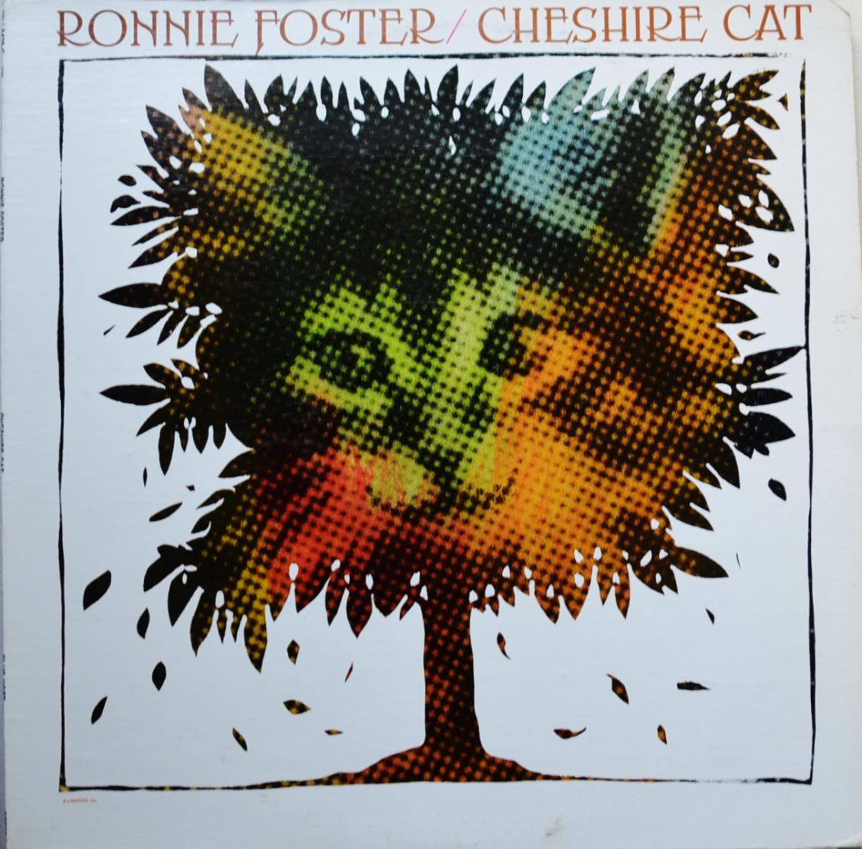 RONNIE FOSTER / CHESHIRE CAT (LP)