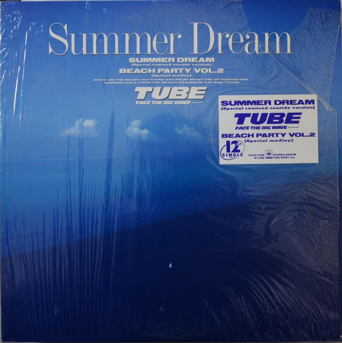 チューブ TUBE / サマードリーム SUMMER DREAM - SPECIAL REMIXED SEASIDE VERSION (12